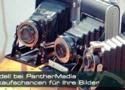 Drei neue Preiskategorien bei Panthermedia