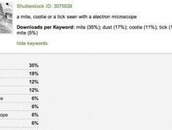 Über welchen Suchbegriff wurde mein Foto bei Shutterstock verkauft?